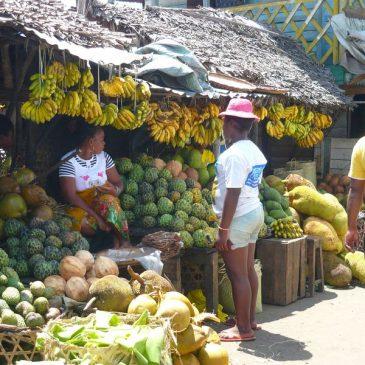 Liaison de Andasibe à Tamatave
