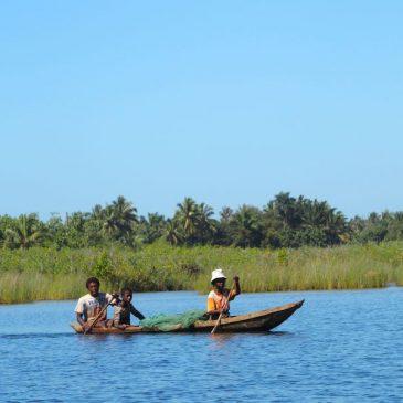 Balade en pirogue sur le canal des Panganales à Manakara