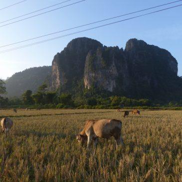 3 jours à Vang Vieng