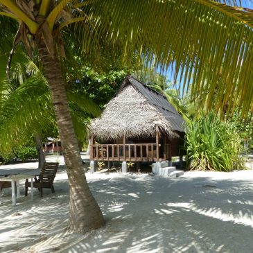L'atoll de Tikehau dans l'archipel des Tuamotu